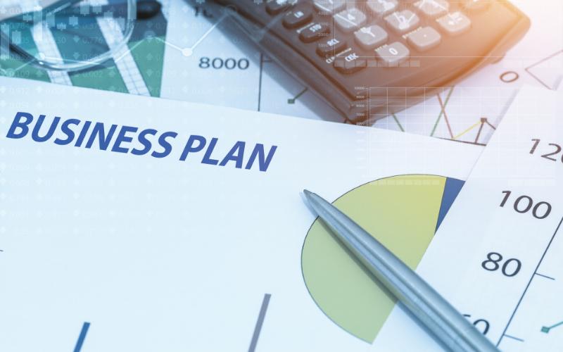 Michaela Schächner Businessplan Vorlage